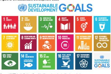 Figure 1: UN Sustainable Development Goals