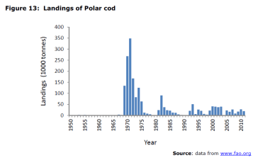 Figure 13 Landings of Polar cod