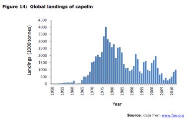 Figure 14 Global landings of capelin