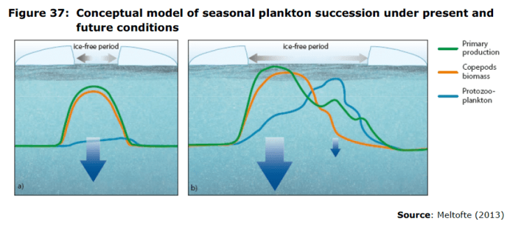 Figure 37 Conceptual model of seasonal plankton succession under present and future conditions
