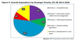 Figure 5: Overall Expenditure by Strategic Priority, EU-28 2014-2020