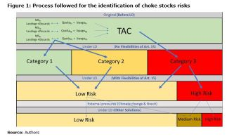 Figure 1: Process followed for the identification of choke stocks risks