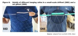 Figure 6: Details of different hanging ratios in a small-scale driftnet (SSD) and a set gillnet (GNS)