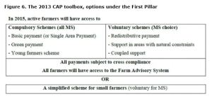 Figure 6. The 2013 CAP toolbox, options under the First Pillar