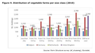 Figure 9: Distribution of vegetable farms per size class.