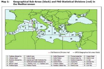 Map 1: Geographical Sub-Areas (black) and FAO Statistical Divisions (red) in the Mediterranean
