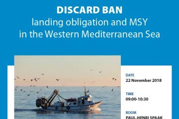 Discard Ban, landing obligation and MSY in the Western Mediterranean Sea