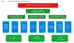 Figure 2: Organigram of Vietnam Directorate of Fisheries