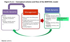 Figure 5.2.1 - Conceptual scheme and flow of the BEMTOOL model