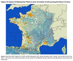 Figure 10: Impact of Hydropower Plants in term of number of eels passing the dams in France