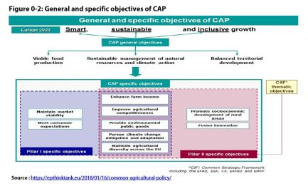 Figure 0 2: General and specific objectives of CAP