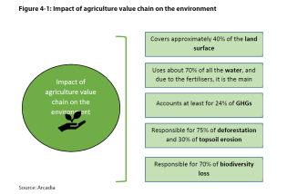 Figure 4-1: Impact of agriculture value chain on the environment