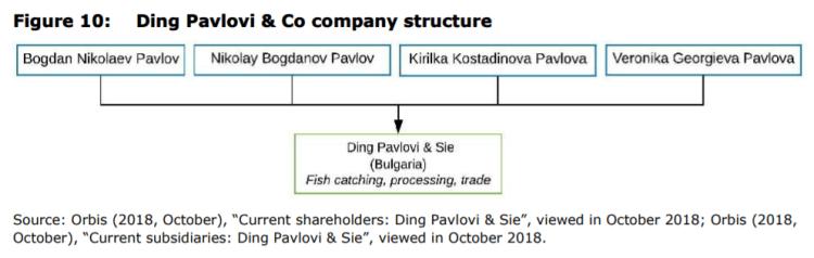Figure 10: Ding Pavlovi & Co company structure