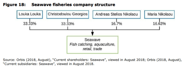 Figure 18: Seawave fisheries company structure