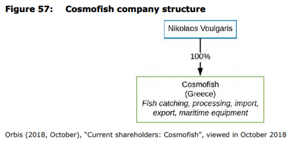Figure 57: Cosmofish company structure