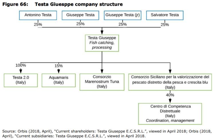 Figure 66: Testa Giuesppe company structure