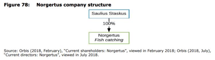 Figure 78: Norgertus company structure