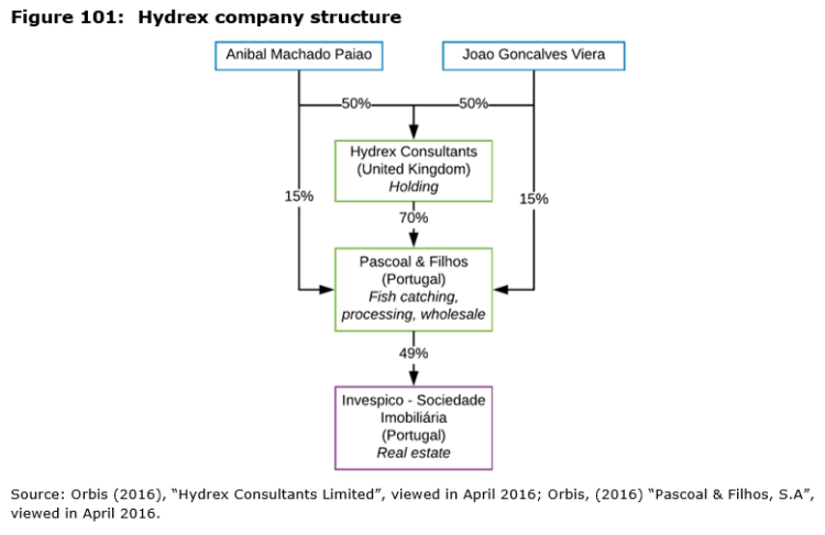 Figure 101: Hydrex company structure