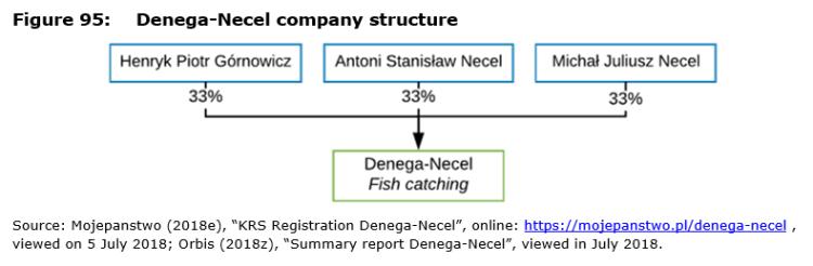 Figure 95: Denega-Necel company structure