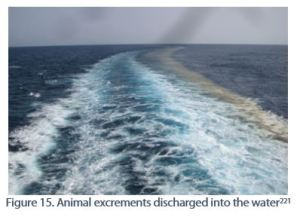 Figure 15. Animal excrements discharged into the water