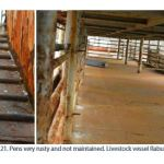 Figure 21. Pens very rusty and not maintained. Livestock vessel Rabunion