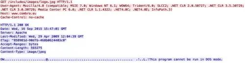 malware downloading executable file