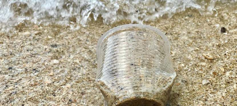 Western Canadians Support Banning Single-Use Plastics