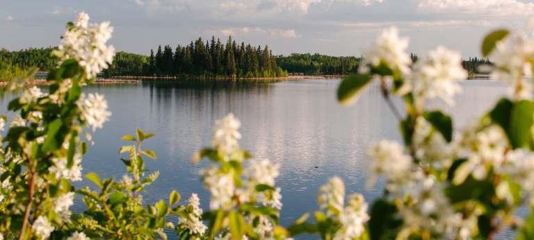 Separatist Feelings Drop in Quebec, Remain Stagnant in Alberta