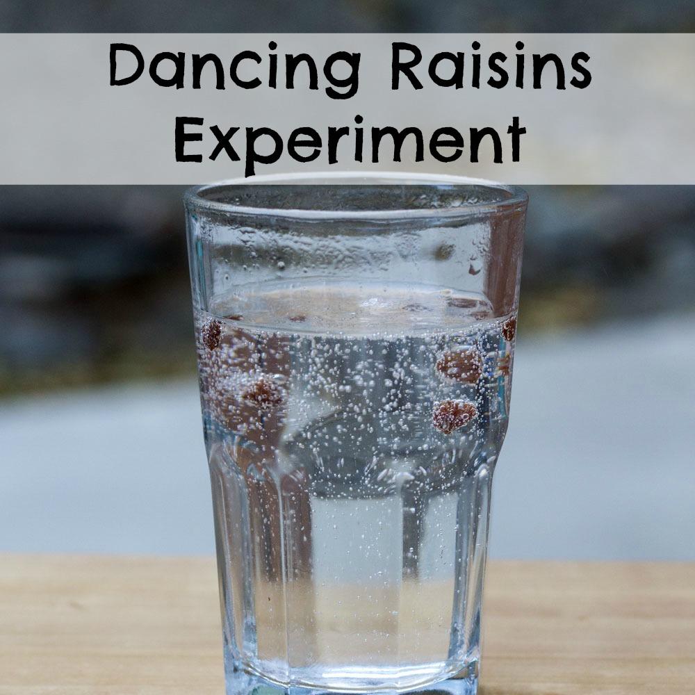 Dancing Raisins Experiment