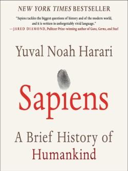homo sapiens 20190217