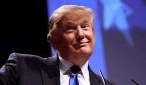 Tout le monde s'est trompé sur Trump