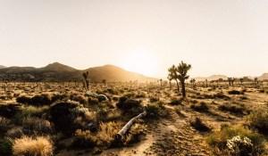 La Namibie, l'exemple à suivre en Afrique