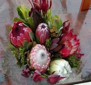 Protea bouquet Resendiz Brothers