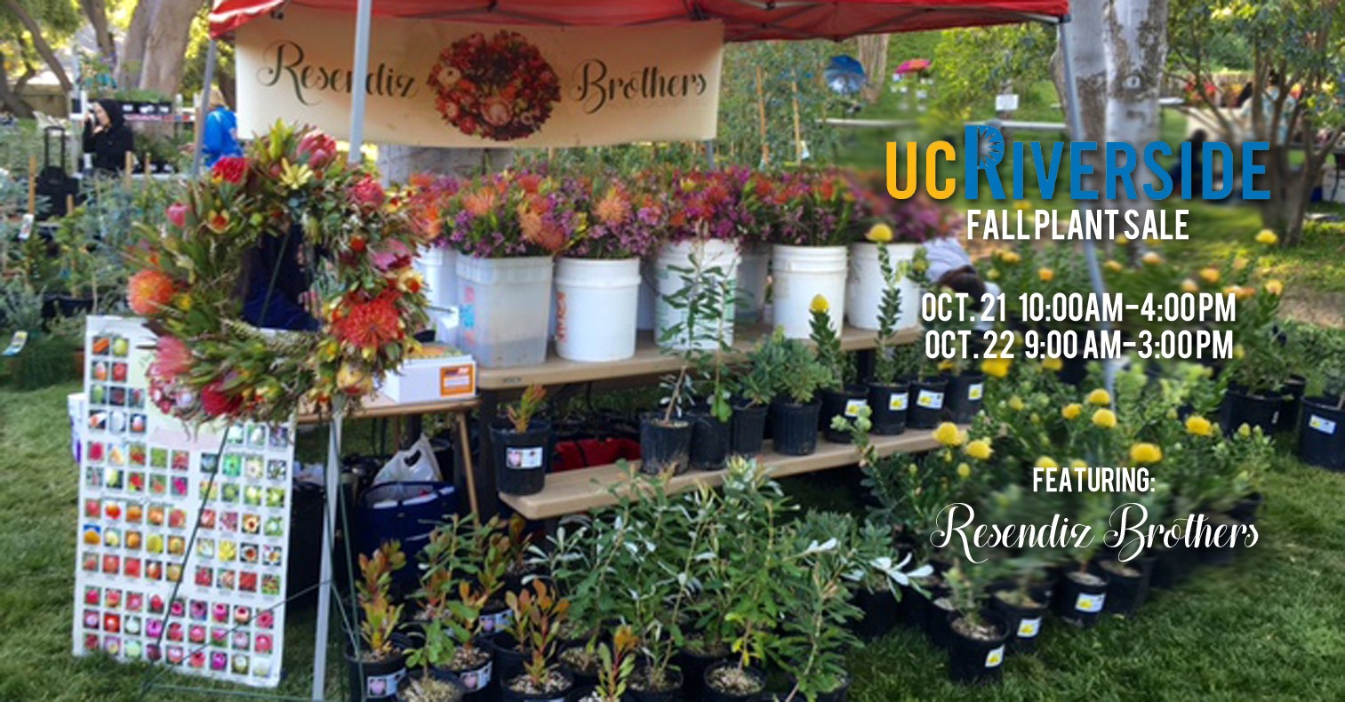 University of California, Riverside – Fall Plant Sale