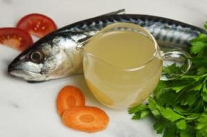 fish-stock