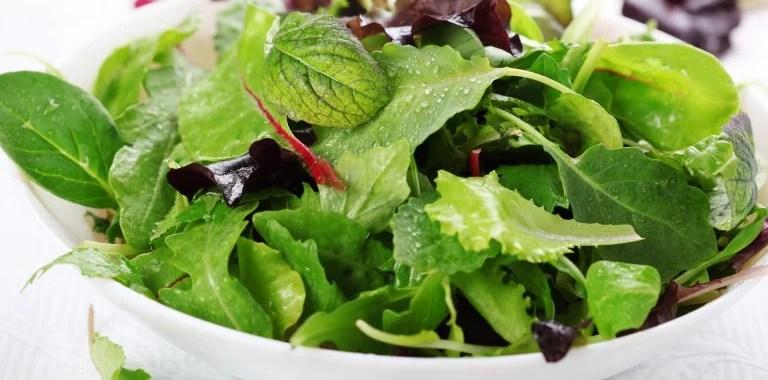 Cara Menyimpan Daun Salad Agar Tetap Segar