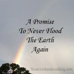Gifts From Heaven – Rainbow