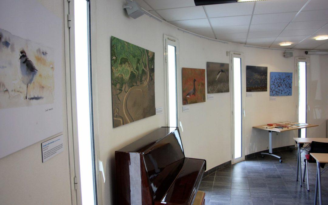 Exposition «Poses en baie de l'Aiguillon»