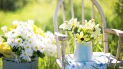 Spring Has Sprung - Time to Check Your Property