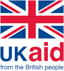 UK AID DFID logo