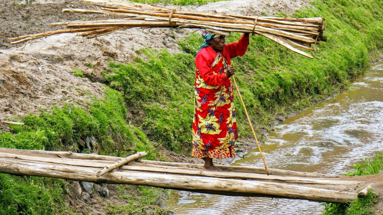 ref2184_woman20carrying_poles