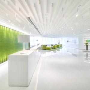 yeşil-ofis-dekorasyonu