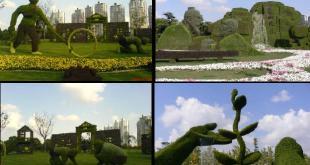 yaratıcı-bahçe-tasarımları (1)