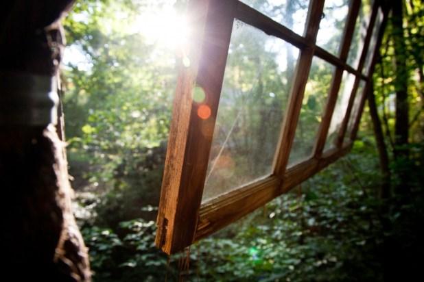 Orman İçinde Muhteşem Antik Muhteşem Ağaç Ev (12)