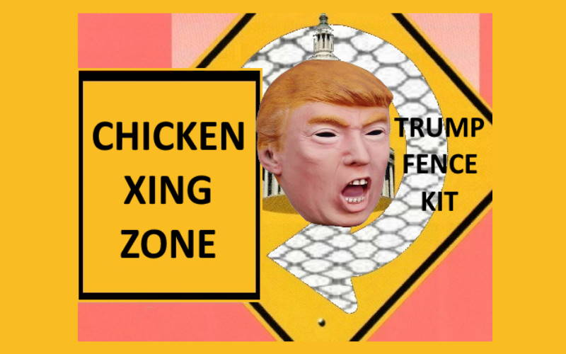 Chicken wire fence for trump White Coop