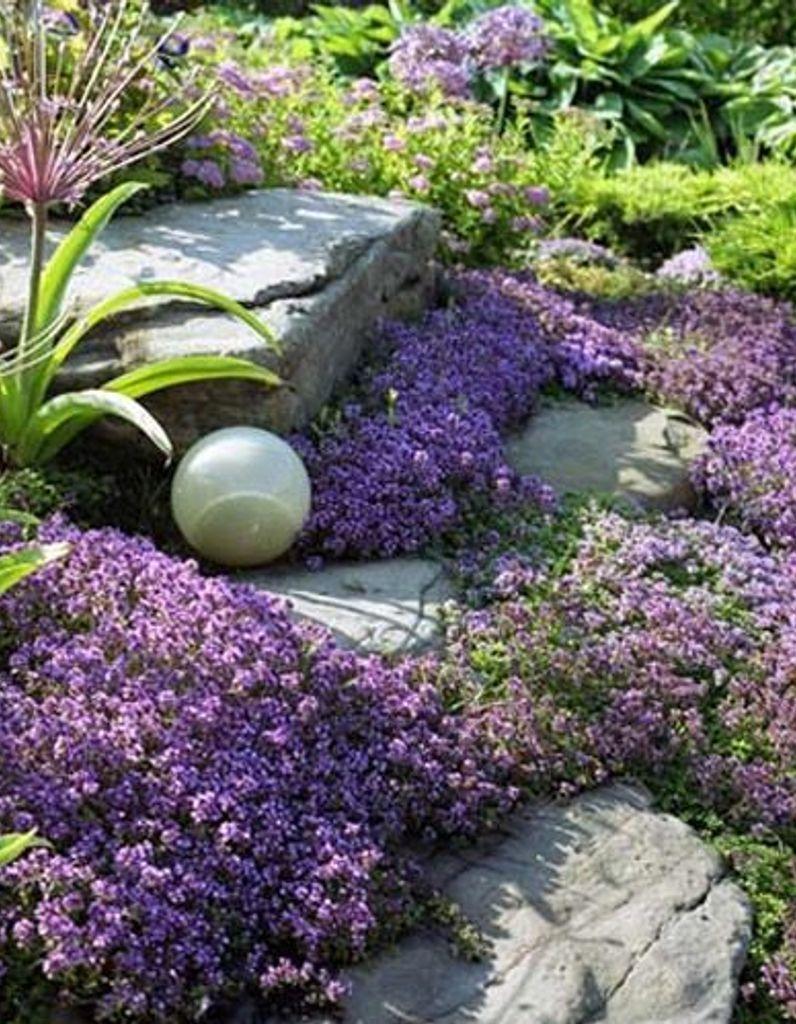 comment creer un massif fleuri zen