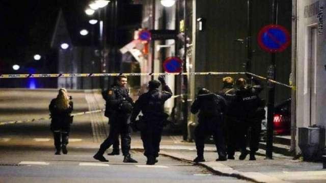 नॉर्वे में हमलावर ने धनुष-बाण से हमला कर पांच लोगों की हत्या की, कई घायल- India TV Hindi