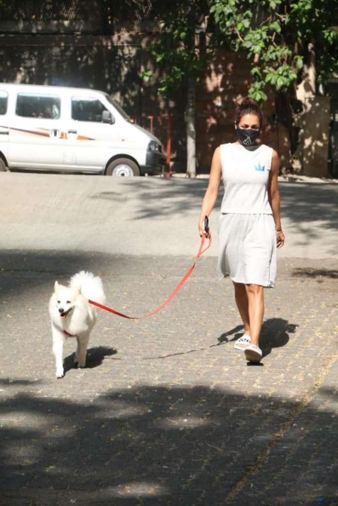 India Tv - Malaika Arora trolled for stepping out for walking dog Casper amidst the lockdown