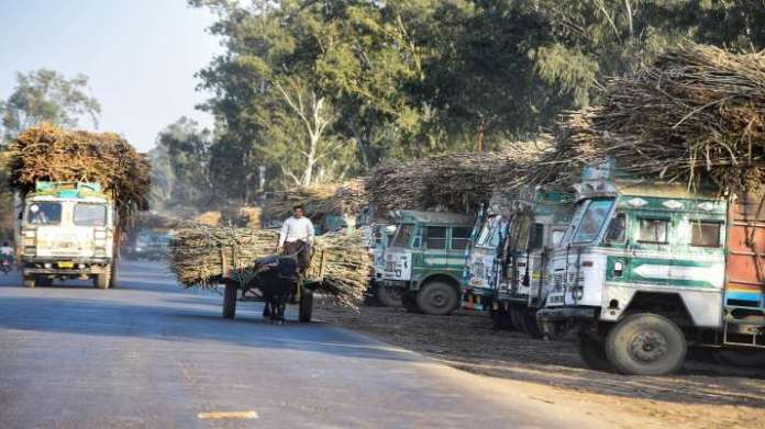 Govt approves highest ever FRP on sugarcane, move to