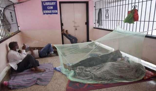 फिरोजाबाद डेंगू का प्रकोप: टोल 51 तक पहुंचा, केंद्र और यूपी के अधिकारियों ने स्थिति की समीक्षा की